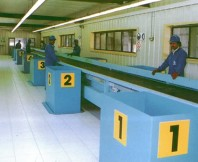 RS Sorting Conveyors